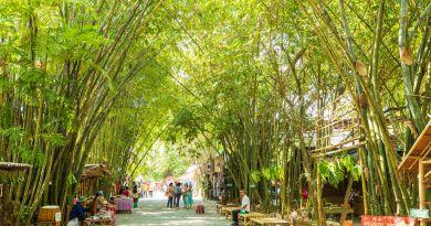 ตลาดป่าไผ่ สร้างสุข @ ควนขนุน พัทลุง
