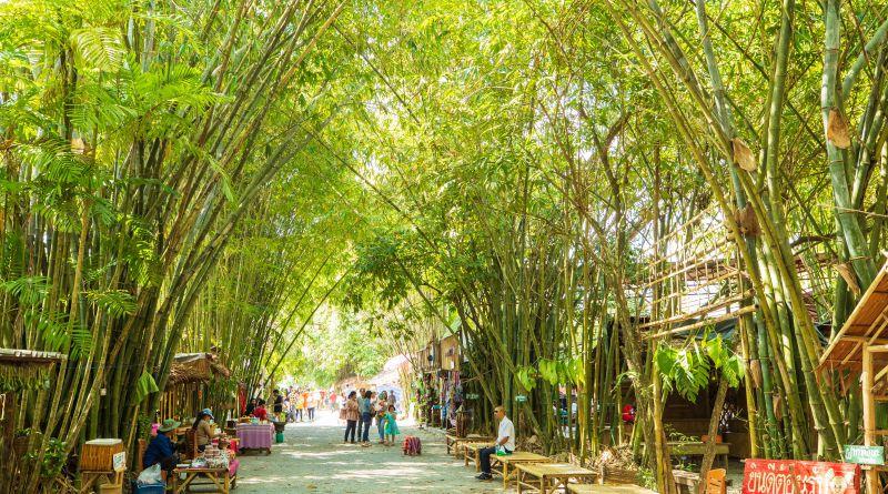 ตลาดป่าไผ่ สร้างสุข