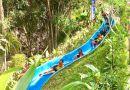 สวนน้ำโหล๊ะหารประชารัฐ @ ป่าบอน พัทลุง
